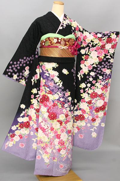 ◆【レンタル専用1805-03470 】黒地に紫ぼかしの艶やか大輪菊柄振袖