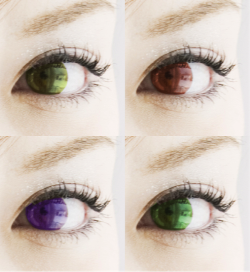 contacts04